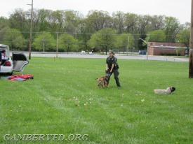 Master Deputy Brittany Powell of the Carroll County Sheriff's Office works with her K-9 Jake during a demonstration.