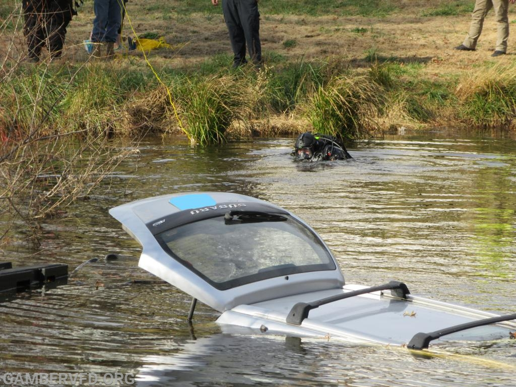 The Subaru Forester partially submerged in the farm pond.